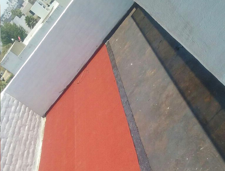 Professional WaterProofing